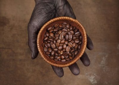 grains_de_cafe_specialite_bourbon_pointu_laurina_arabica